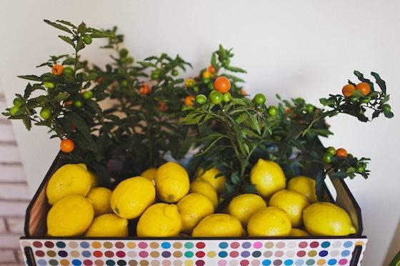 FestaInfantil-Quitanda-Frutas_11