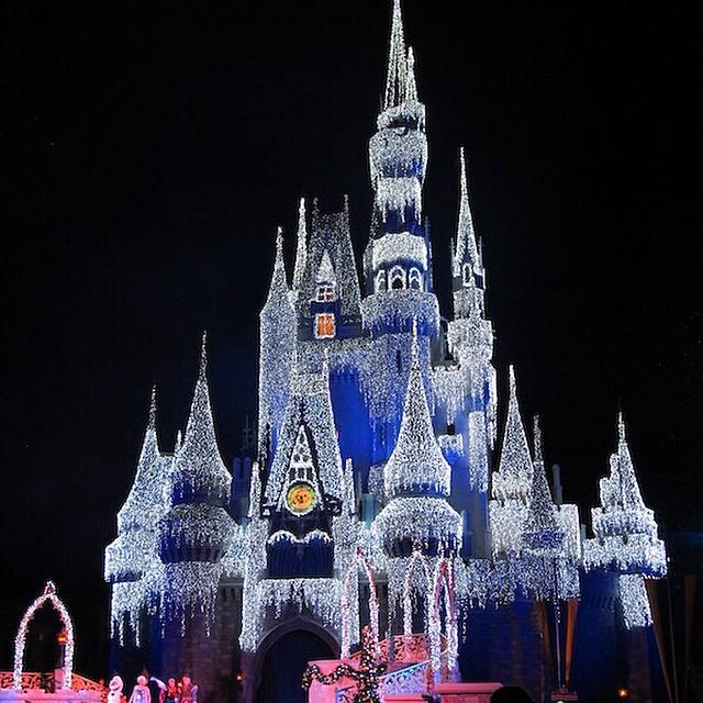 E para encerrar a noite, a foto mais bonita da viagem: o castelo da Cinderela